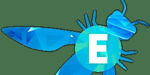 OWASP Lithuania meet #3/ OWASP EEE week