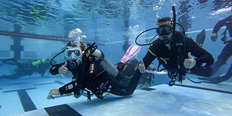 Learn to Dive. Get your PADI Open water Certification with Dive HQ tickets