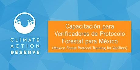 Capacitación para Verificadores de Protocolo Forestal para México (español) entradas
