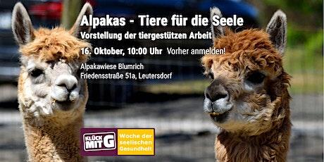 Workshop auf der Alpakawiese Blumrich tickets