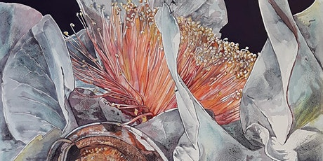 Melville Art Awards:  Romancing Botany,  watercolour with Judy Rogers tickets
