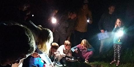 Wild families: Night walk at Foxburrow Farm EFC 2511 tickets