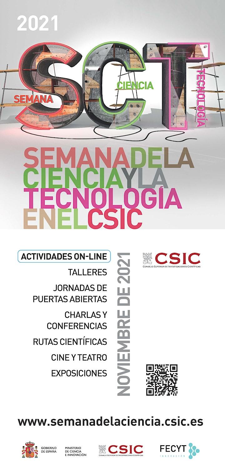 Imagen de Proyección de la serie 'Mociño' - SEMANA DE LA CIENCIA