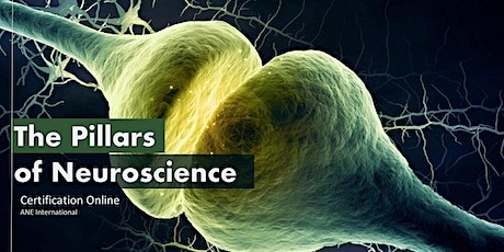 Certification in Pillars of Neuroscience for Coaches and Consultants tickets