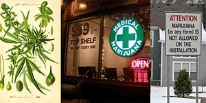 Cannabis Cultures: Tour, Discussion & Reception in...