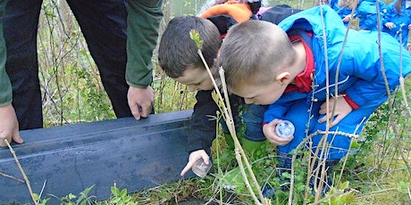 Family Forest School Sessions Radcliffe 2.5 - 4yrs tickets