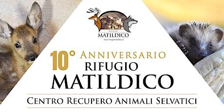 FESTA PER IL 10° ANNIVERSARIO CRAS RIFUGIO MATILDICO biglietti
