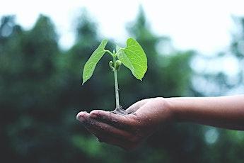 Let's Get Growing | Sharing Garden | Church Elm Lane Shop tickets