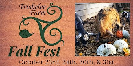Triskelee Farm Fall Fest 2021 tickets