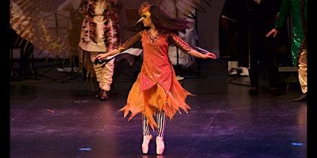 Beginning Ballet and Dancer Conditioning tickets