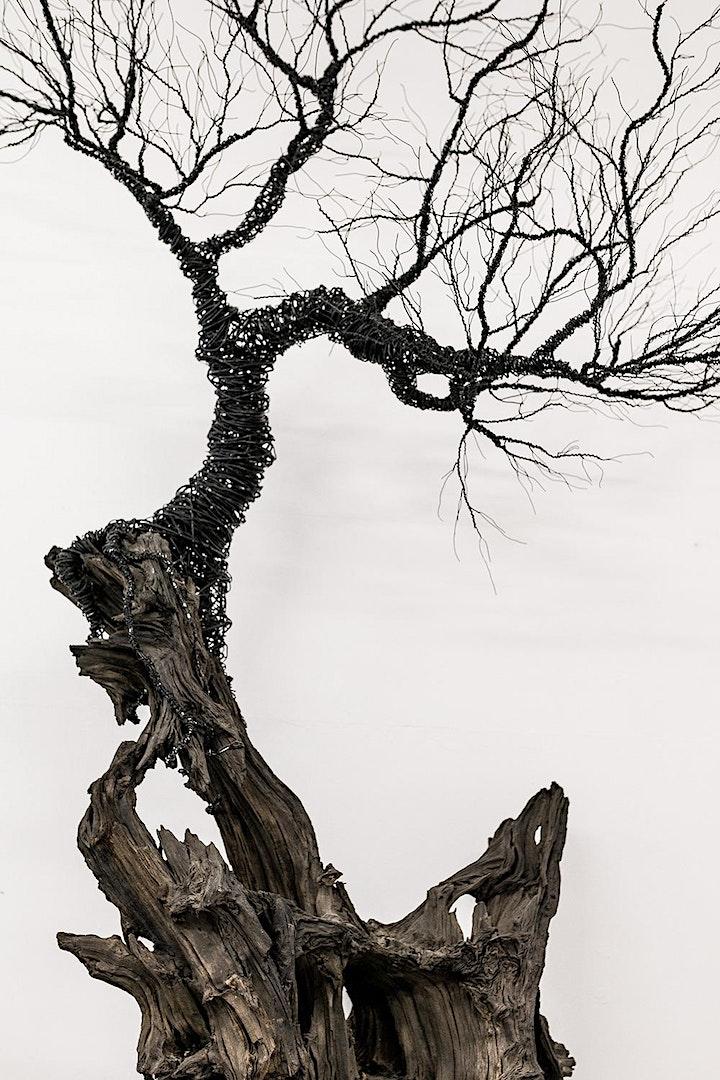 Tree Sculpture beginners workshop at the Ballymaloe Craft Fair image