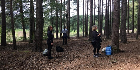 Forest Bathing at Horsell Common, Woking, GU21 tickets