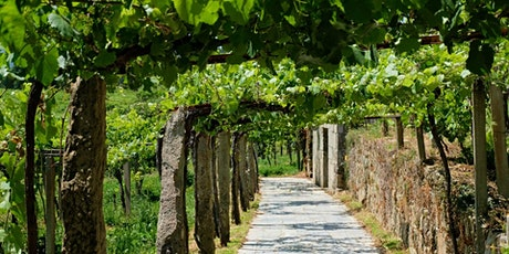 NW Spain Wine & Charcuterie Tasting tickets