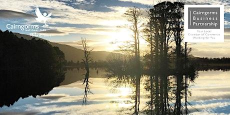 National Park Experiences Webinar tickets