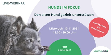 Hunde im Fokus: Den alten Hund gezielt unterstützen Tickets