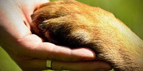 Animal Assisted Interventions in the Hospice Environment tickets