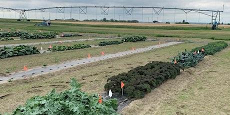 Irrigation Saskatchewan Virtual Field Day - Horticultural Crops tickets