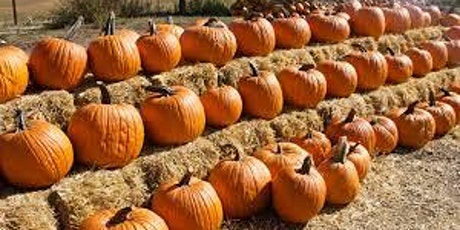 Cook-Along with Nourishing Literacy: Family Style Pumpkin Party! tickets