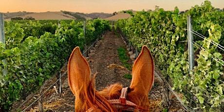 Wine, Dine, and Horseback Ride tickets