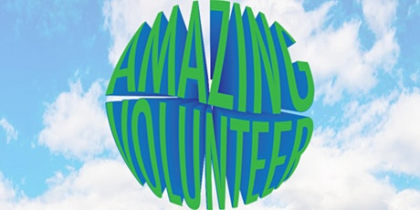 Virtual Book Launch: How to be an Amazing Volunteer Overseas tickets