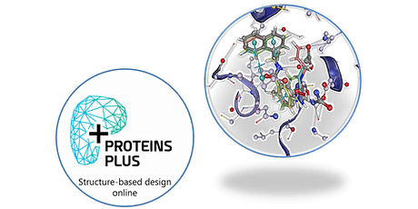 On-The-Fly Molecular Docking with JAMDA on the ProteinsPlus Web Server tickets