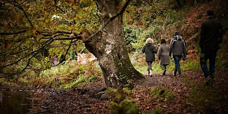 Wildlife & Wellness Walk in the depths of St Lawrence tickets