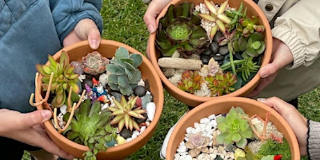 Soups & Succulents Fall Workshop (Tuesday, November 16th) tickets