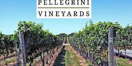 Singles Long Island  Vineyards Wine Tasting + Lunch tickets