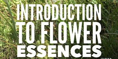 Introduction to Flower Essences