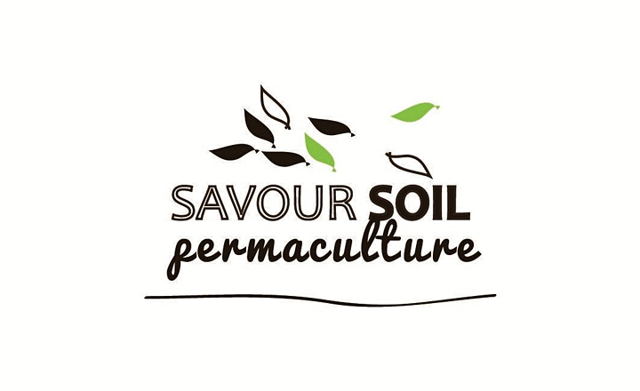 Sustainable Ipswich - Getting Smart about Water with Savour Soil image