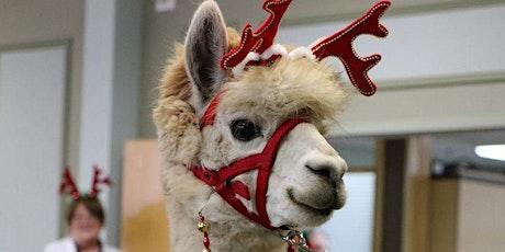 Christmas Open House at Shear Heaven Farm including Alpacas of York tickets