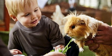 FREE Animal Learn & Play Session ROYAL PARK tickets