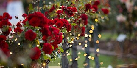 International Rose Garden Festival Morwell - AGL Night Lights Installation tickets