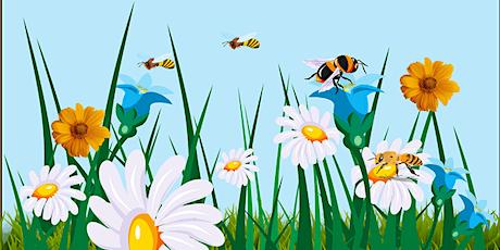 Yr Her Pasbort Peillio | The Pollinator Passport Challenge tickets