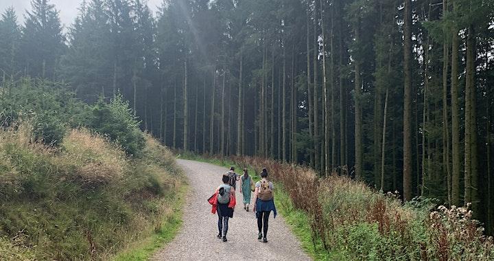 October Wilderness Walk: Bollington image