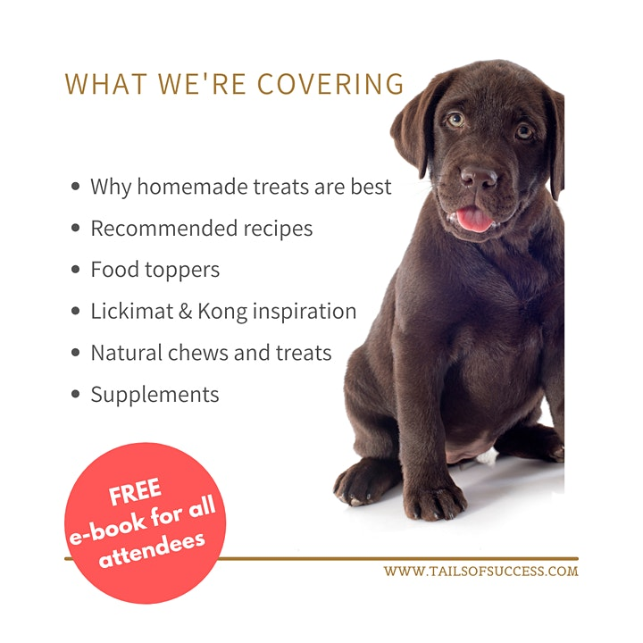 Tails of Success - Homemade treats and supplements for a healthy labrador image
