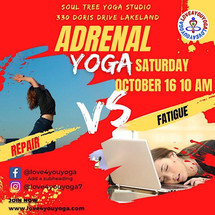 Adrenal Yoga Repair VS Fatigue image