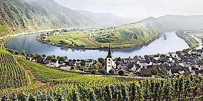 Germany – Old World Wonderful Wines~