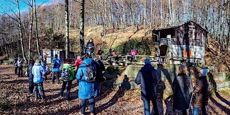 Sa,20.11.21 Wanderdate Singlewandern - Highlights im Felsenmeer für 35-55J Tickets