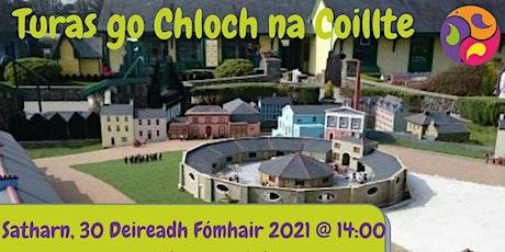 Turas go Chloch na Coillte do Theaghlaigh tickets