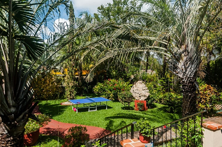 Imagen de The Secret Garden // This Confussion // Born in Mexico // Cancún
