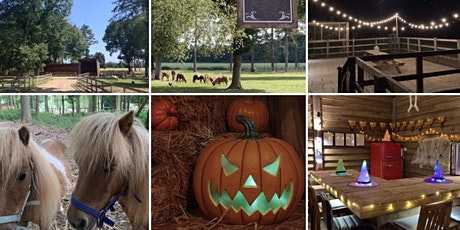 Halloween Fancy Dress Fun on the Farm -Private Hire -   22 Oct - 31 Oct tickets