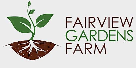 Fairview Gardens Halloween Door Dash tickets