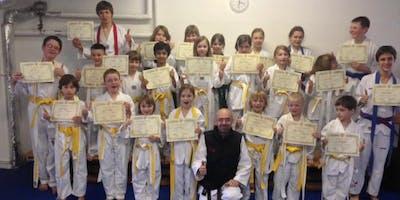 "Probetraining ""olympisches Taekwondo"" ab 8 Jahre"