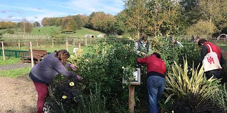 Gardening Masterclass at Standalone Farm - Autumn Pruning tickets