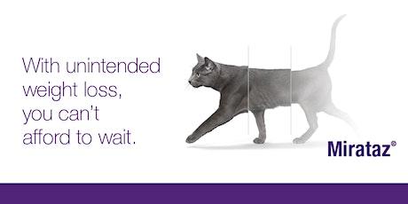 Can't Eat. Won't Eat? Getting your feline friend feeding again. tickets