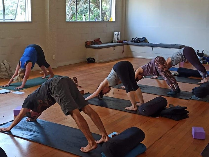 Studio Healing Hatha Yoga with Lilly image