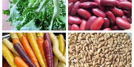 Workshop Vegetarische maaltijd tickets