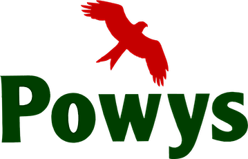 Cwricwlwm i Gymru / Curricumlum for Wales tickets