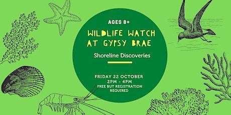 October Wildlife Watch at Gypsy Brae: Shoreline Discoveries tickets